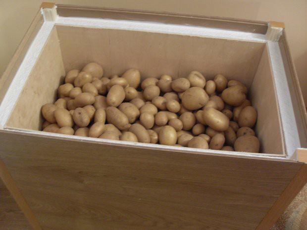 Красивая лоджия персивого цвета со шкафом и ящиком для хранения картошки