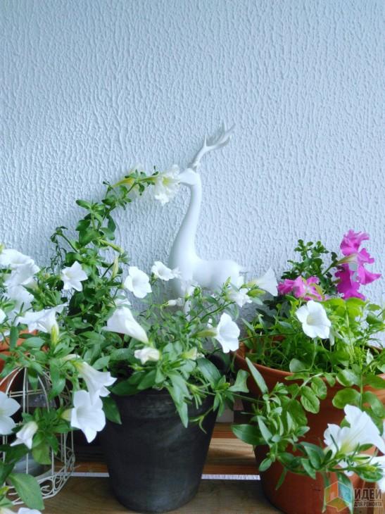 Дизайн летней лоджии площадью 3,4 кв.м. с цветочным декором